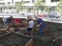 Familias de Cappont cuidan el huerto de la escuela Frederic Godàs en verano