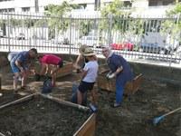 Famílies de Cappont cuiden l'hort de l'escola Frederic Godàs a l'estiu